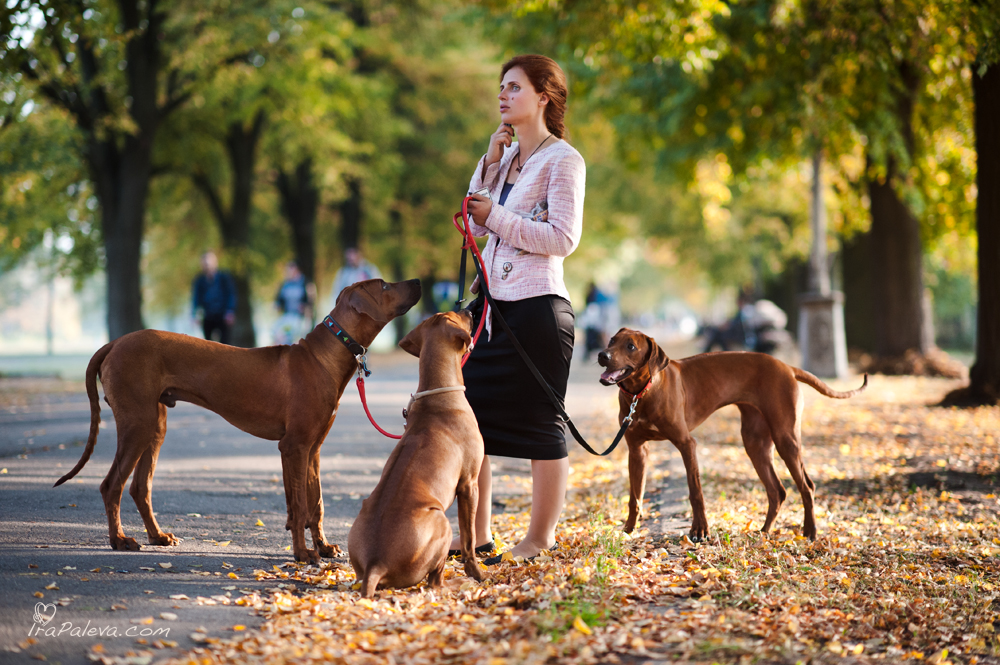 girl-with-dogs